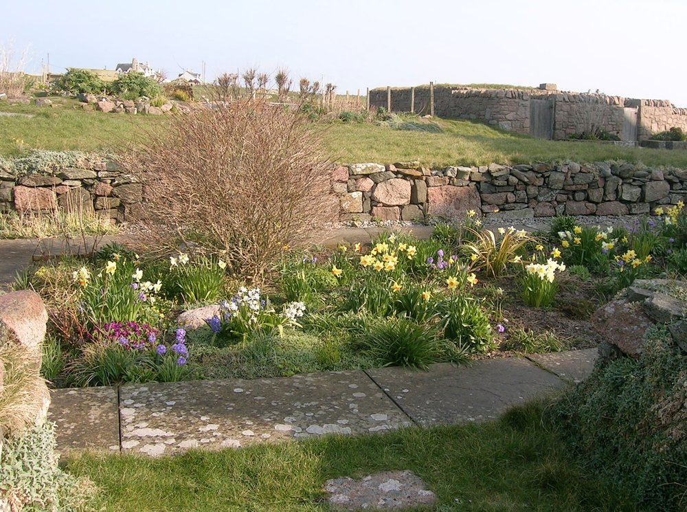 In front of the Iona Abbey, is a sunken garden surrounded by a stone wall and every spring, new life returns to the garden.