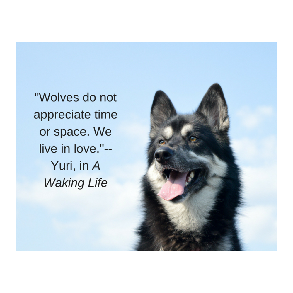 _Wolves do not appreciate time or space. We live in love._--Yuri, in A Waking Life (1).png
