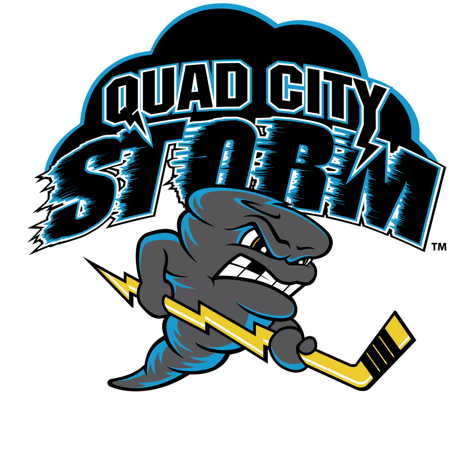 Image result for qc storm logo