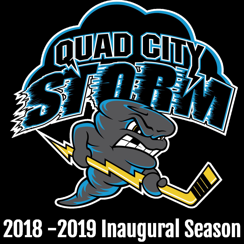Image result for qc storm logo