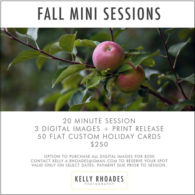 Fall Mini Sessions | Kelly Rhoades Photography