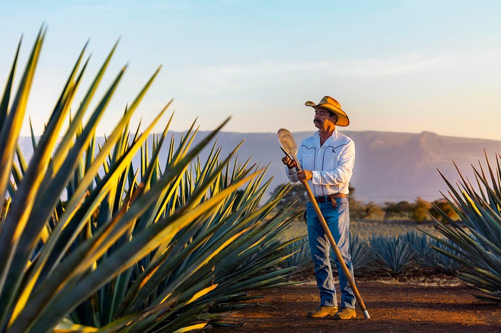 Mundo Cuervo - Tequila