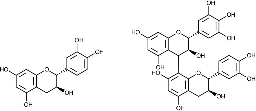 """Figura 6.    Estructura de un monómero (izq.) y un dímero -con diferentes monómeros- (der.) de polifenoles. El monómero es un flavanol, y el dímero es un flavanoide. Podemos ver cómo los flavanoles forman flavanoides (cadenas de flavanoles) como si fueran eslabones de una cadena al """"polimerizarse""""."""