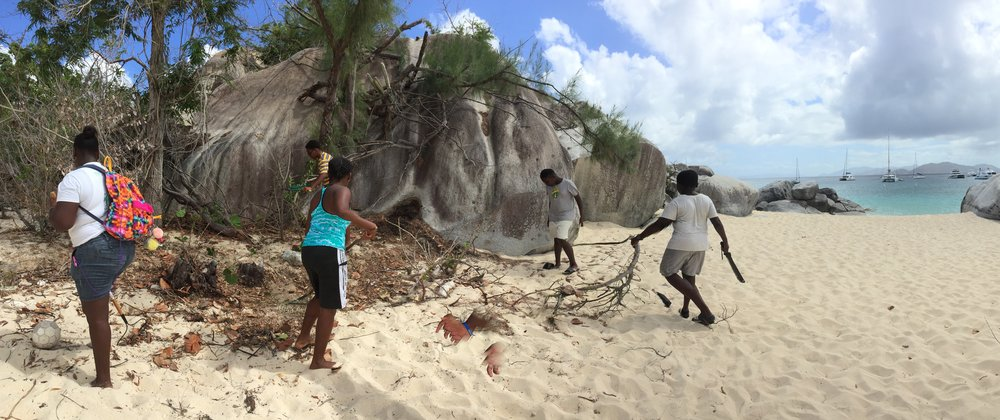 Green Sprouts during beach cleanup on Spring Bay in Virgin Gorda, British Virgin Islands (B.V.I.)