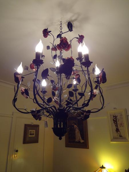 LAMP-CL008