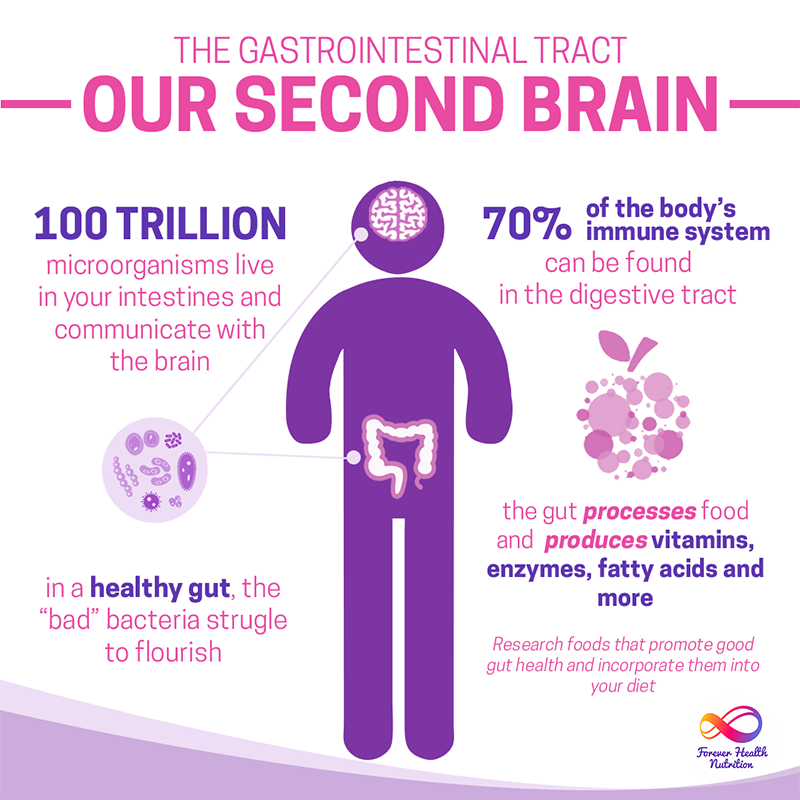 Our Second Brain_800x800px.png