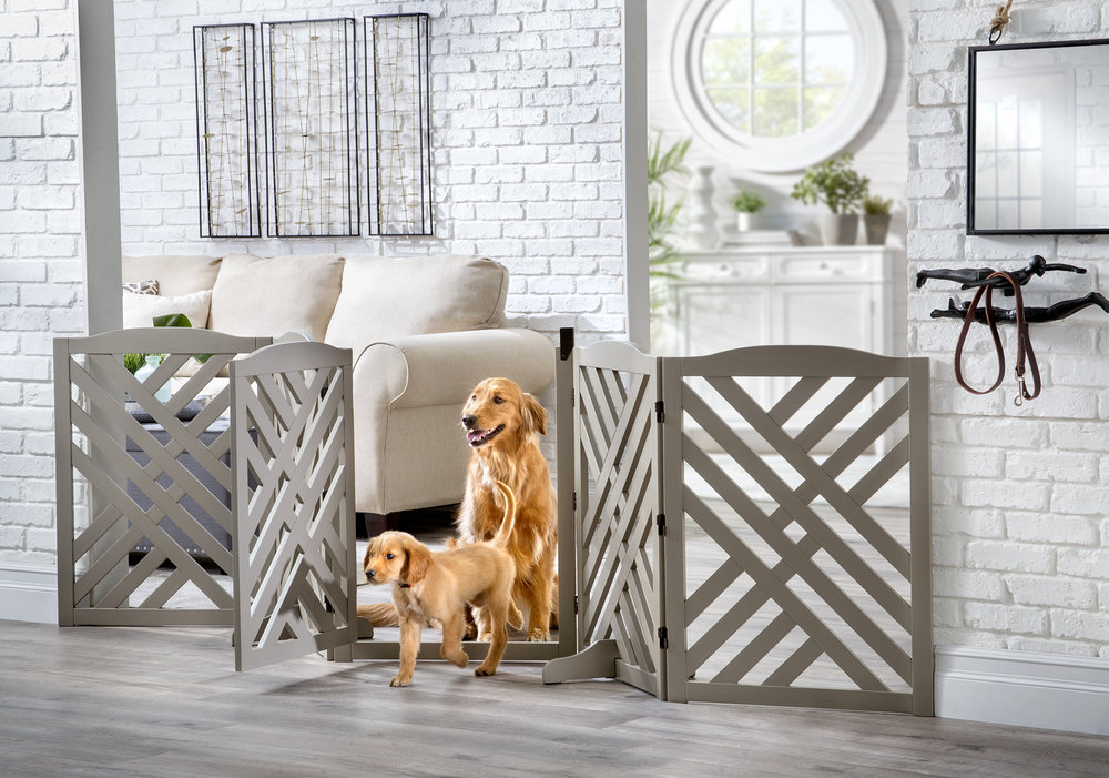 582186 winston 5 panel pet gate with dogs env open.jpg