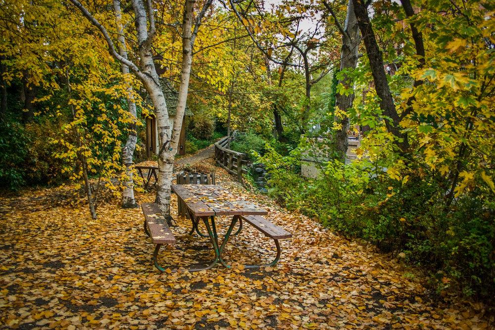 Ashland Picnic Table.jpg