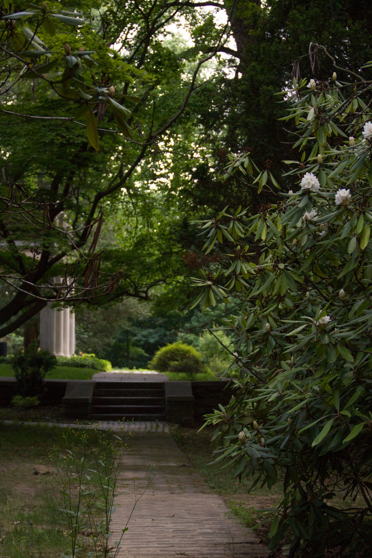 Pathway behind the Woodcrest Mansion