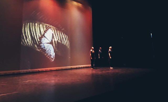 Wings 🦋 #theater #show #adults #combiclass #modern #moderndance #skd #alkmaar #dancewithyourheart #beautiful #happyplace #dancing