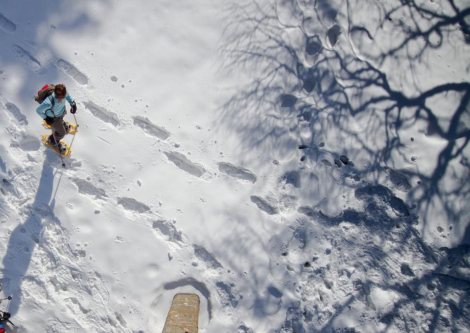 Snow shoeing.jpg