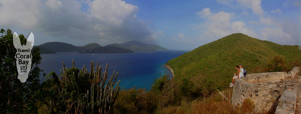 View from the Murphy House ruins on the Johnny Horn Trail in Coral Bay, St. John
