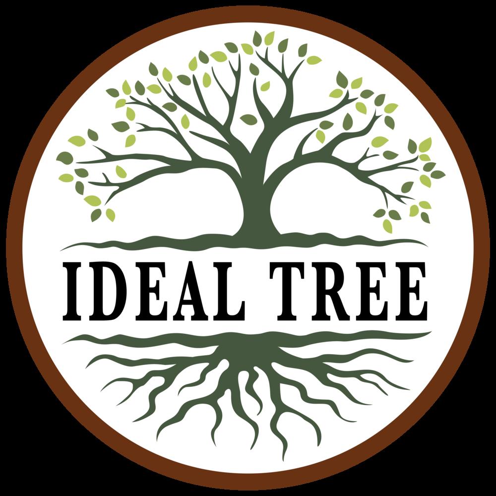IdealTree_Logo_1024_color (1).png
