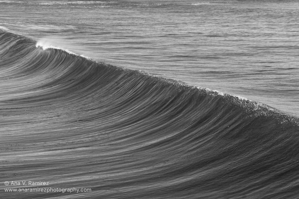 black and white ocean wave photograph