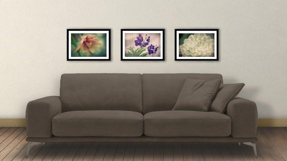3-film-flowers-8-x-12-e1512584118304.jpg