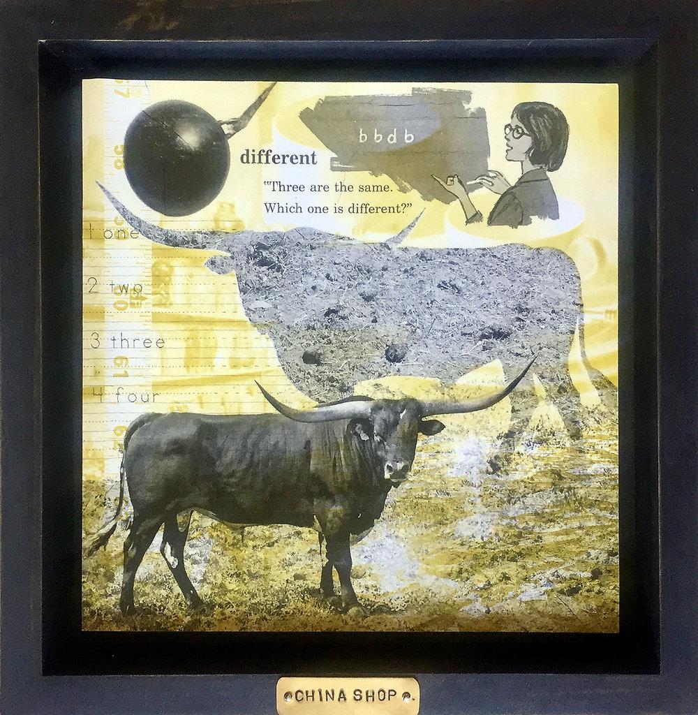 bull in china shop.jpg