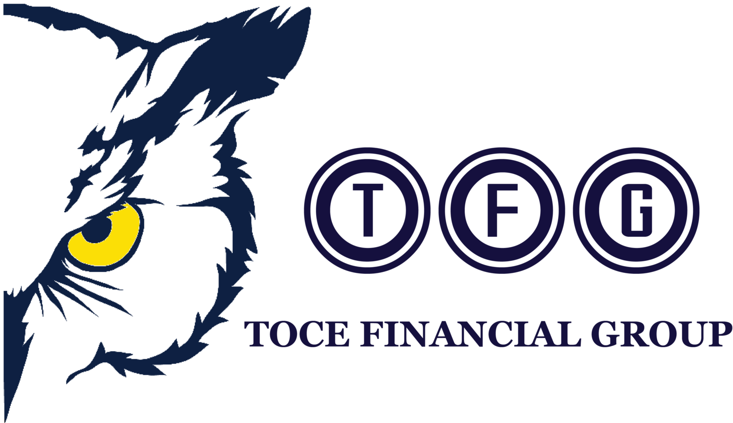 Toce Financial