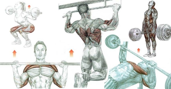 compound-exercises-1.jpg