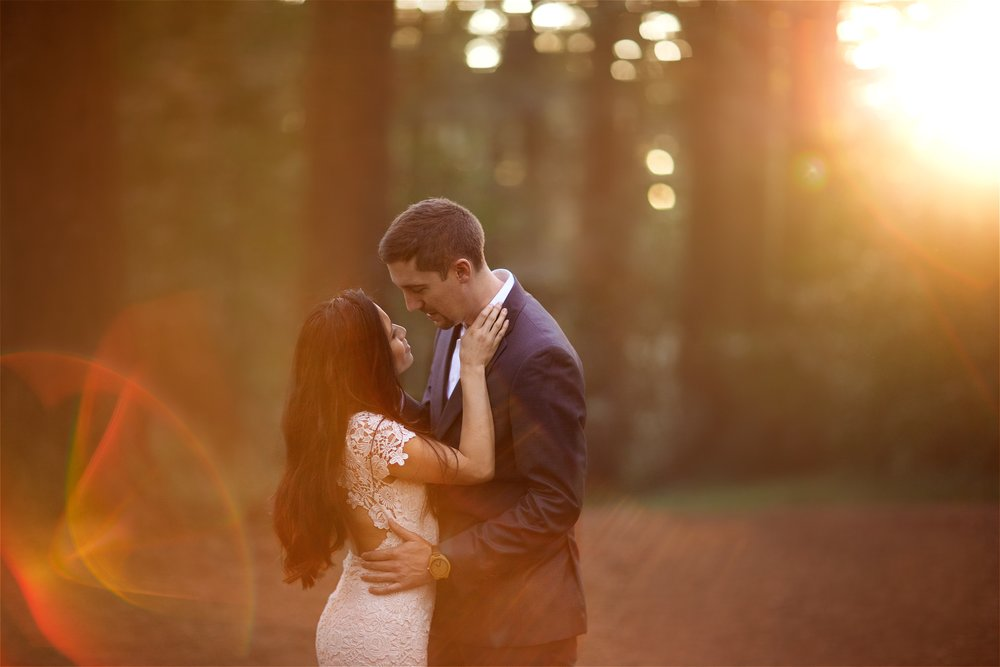 Sunset engagement photos in the Redwoods at Robert's Regional in Oakland