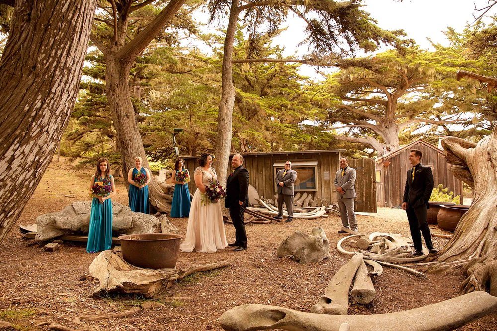 Bridal party in front of Point Lobos whale bones