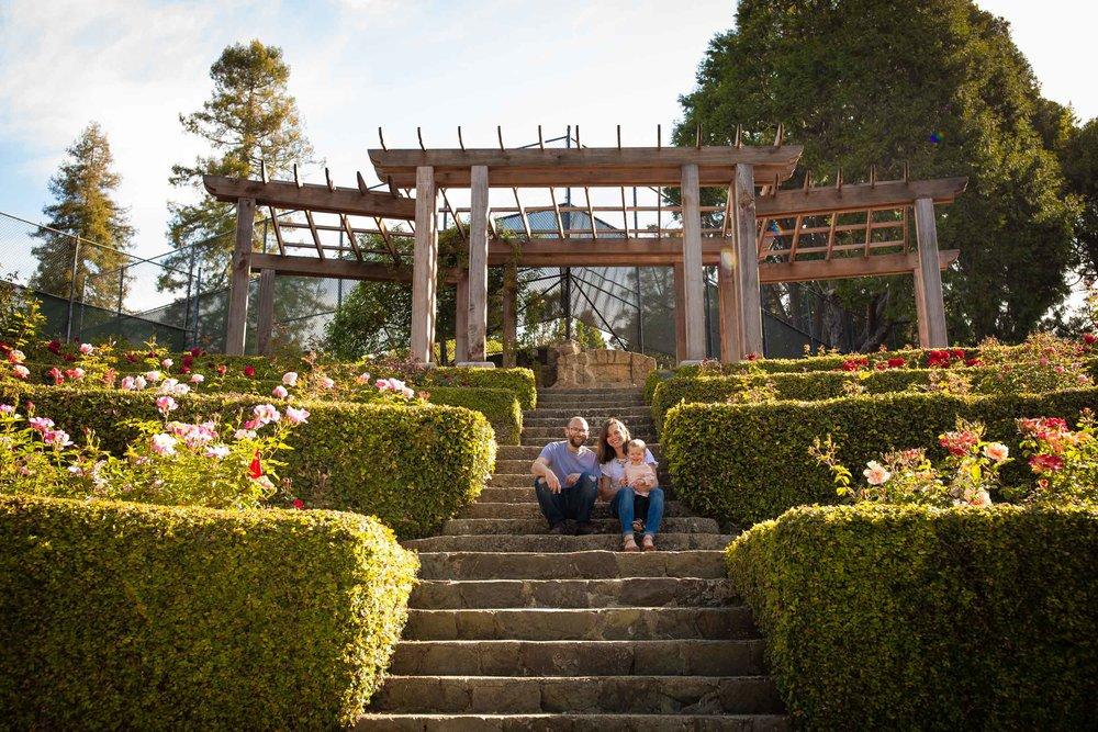 Berkeley-Rose-Garden-Family-Photos-11.jpg