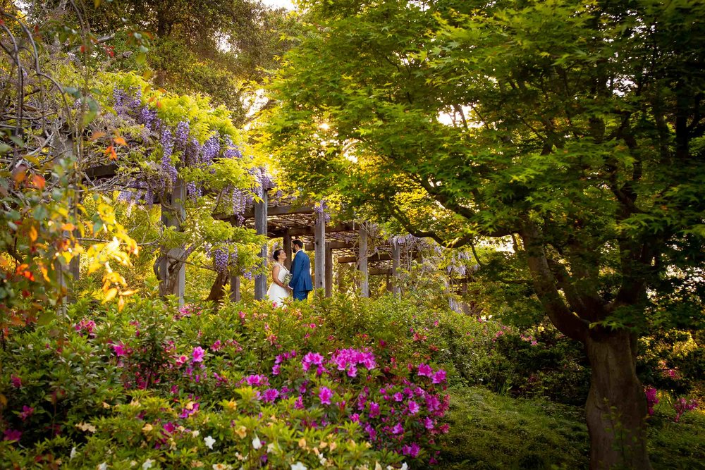 Hakone-Gardens-wedding-Saratoga-1.jpg