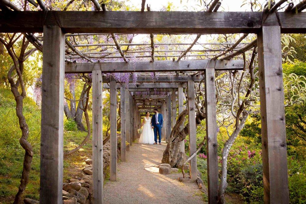 Hakone-Gardens-wedding-Saratoga-46.jpg