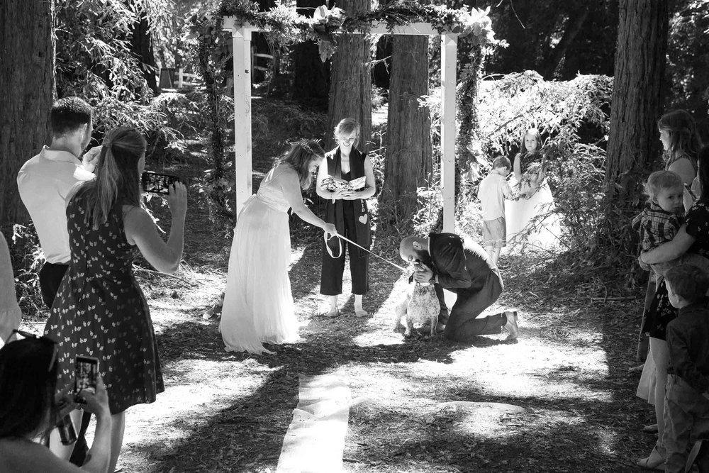 Roberts Regional recreation area wedding-19.jpg