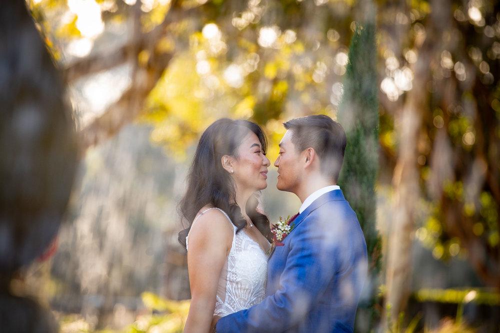 Merryvale Vineyards Wedding-19.jpg