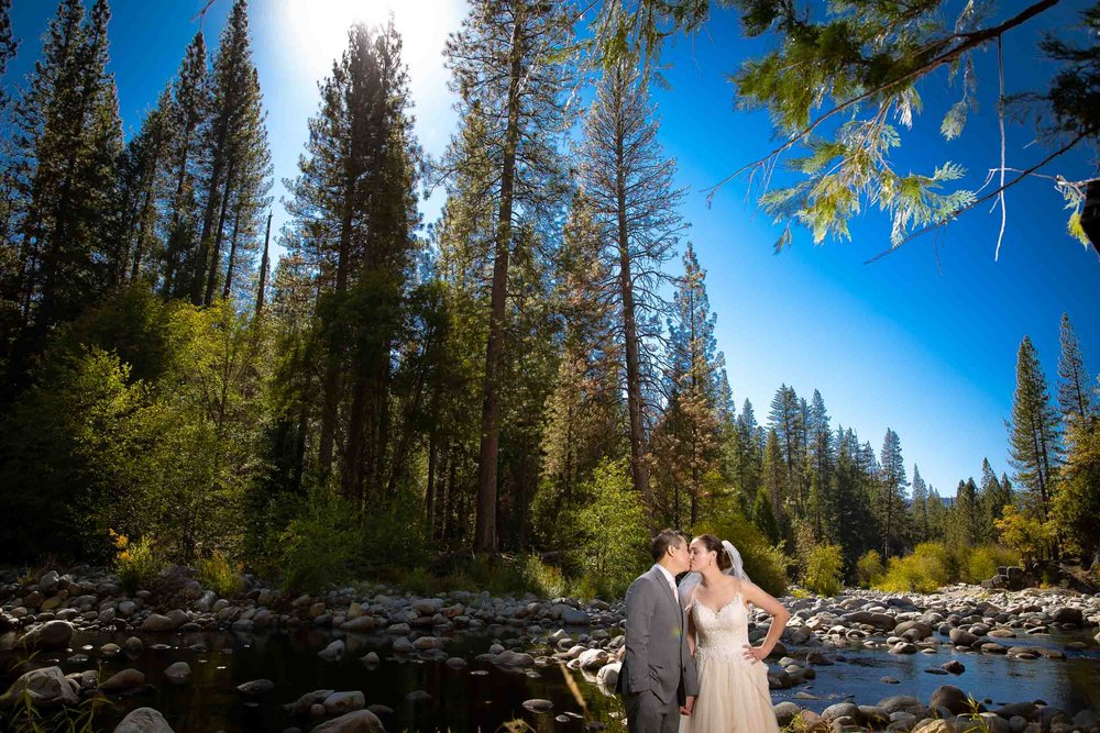 The redwoods in Yosemite wedding