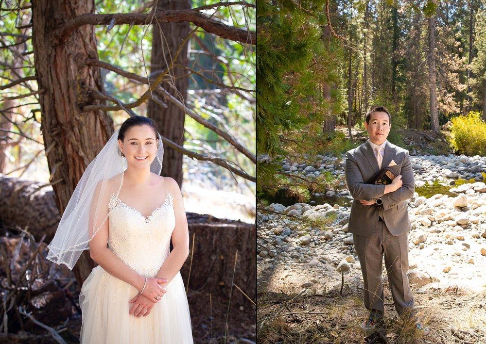 The redwoods in Yosemite wedding-1.jpg