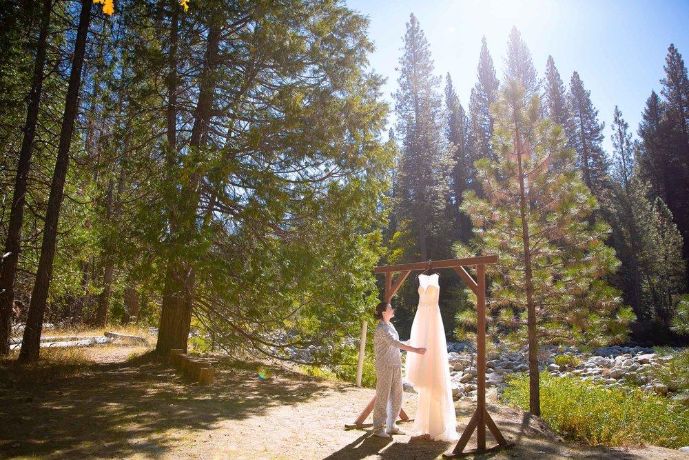 The redwoods in Yosemite wedding-15.jpg