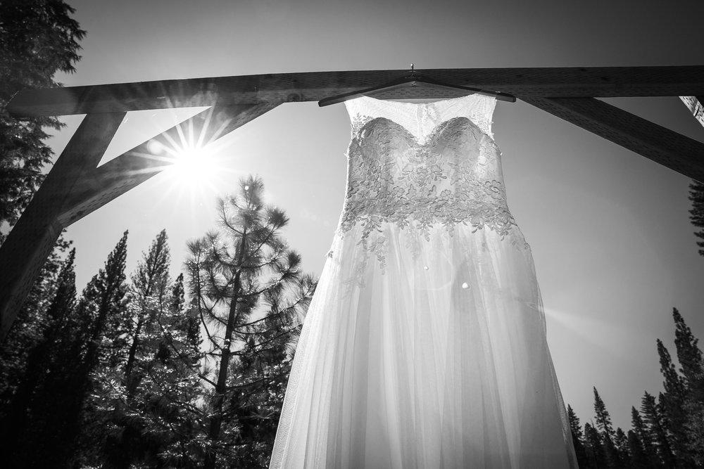 The redwoods in Yosemite wedding-17.jpg