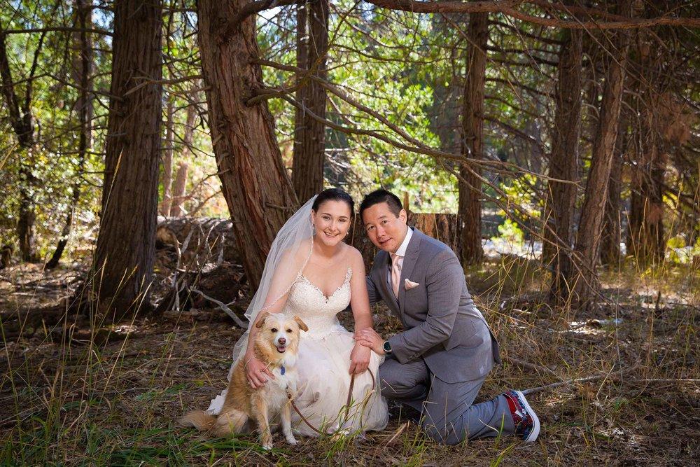 The redwoods in Yosemite wedding-34.jpg