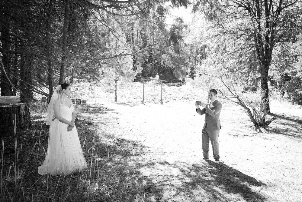 The redwoods in Yosemite wedding-38.jpg