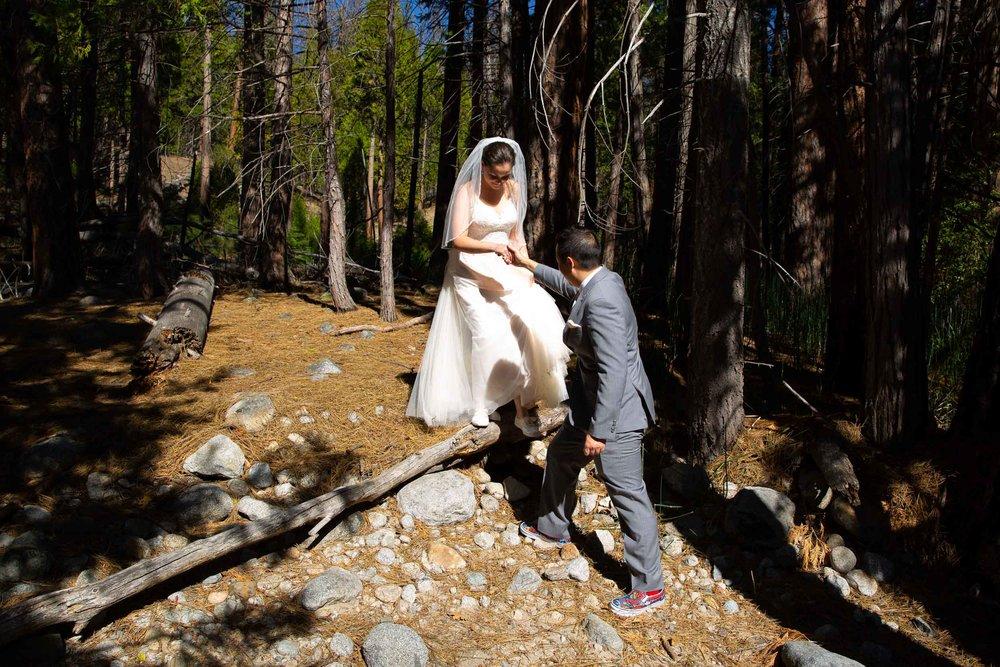 The redwoods in Yosemite wedding-40.jpg