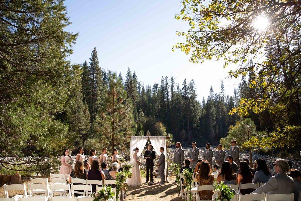 The redwoods in Yosemite wedding-56.jpg