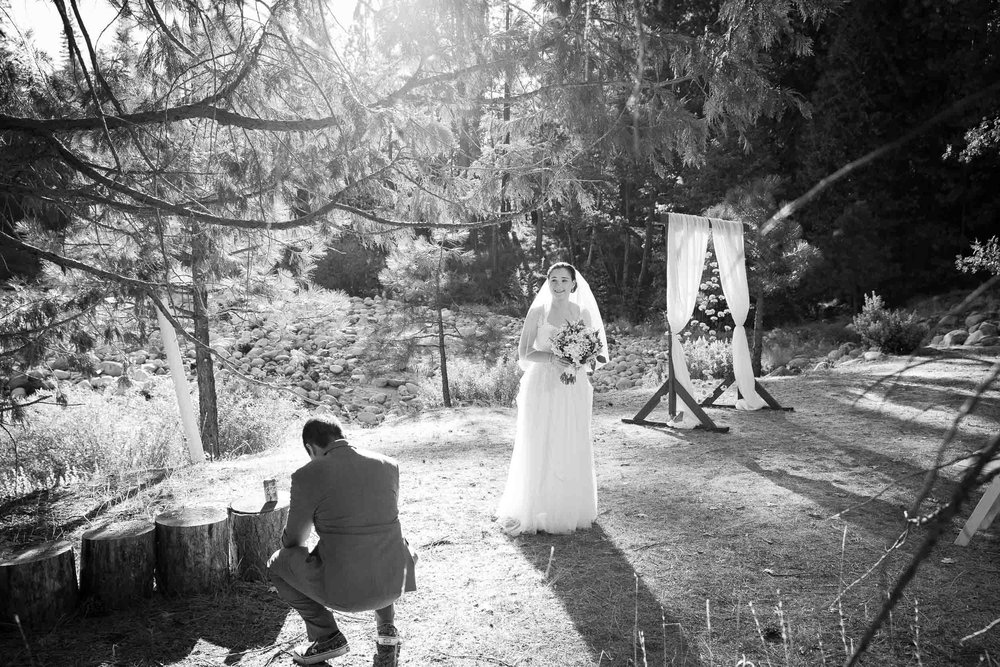 The redwoods in Yosemite wedding-62.jpg