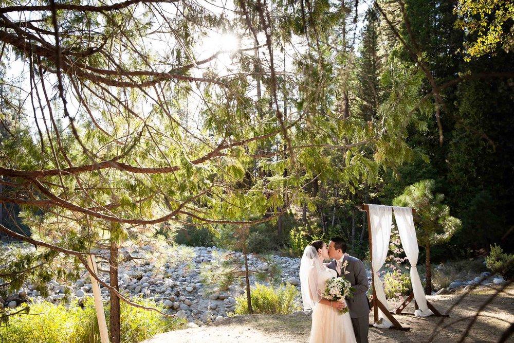 The redwoods in Yosemite wedding-63.jpg