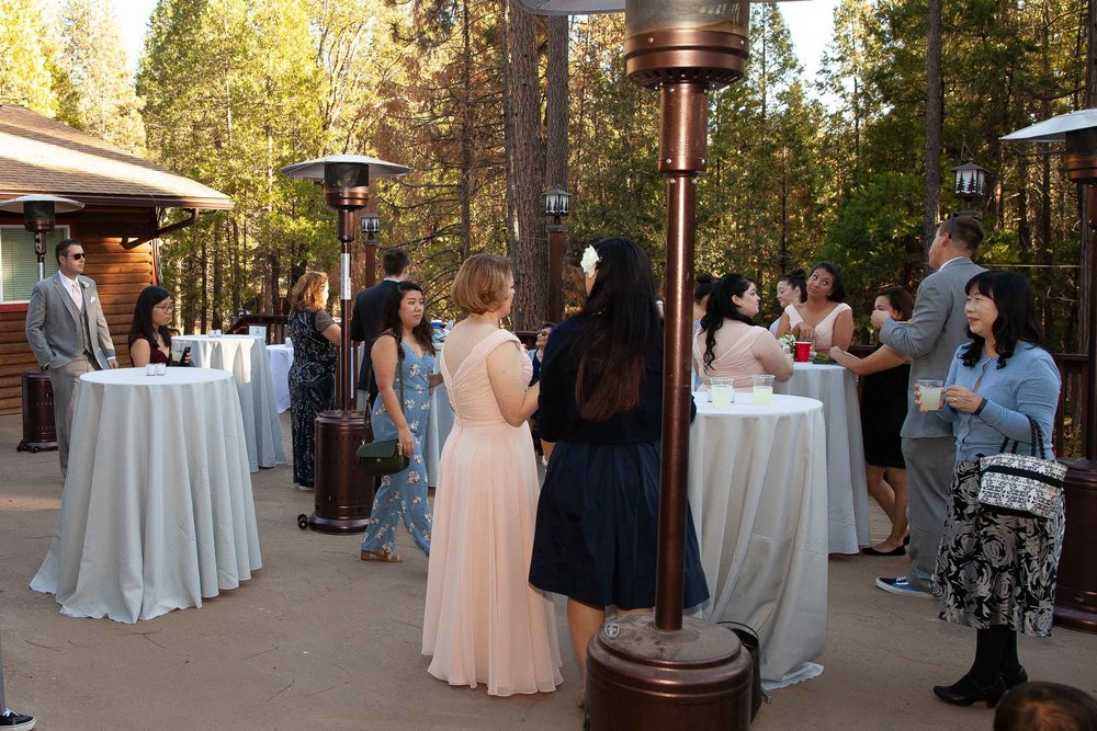 The redwoods in Yosemite wedding-70.jpg