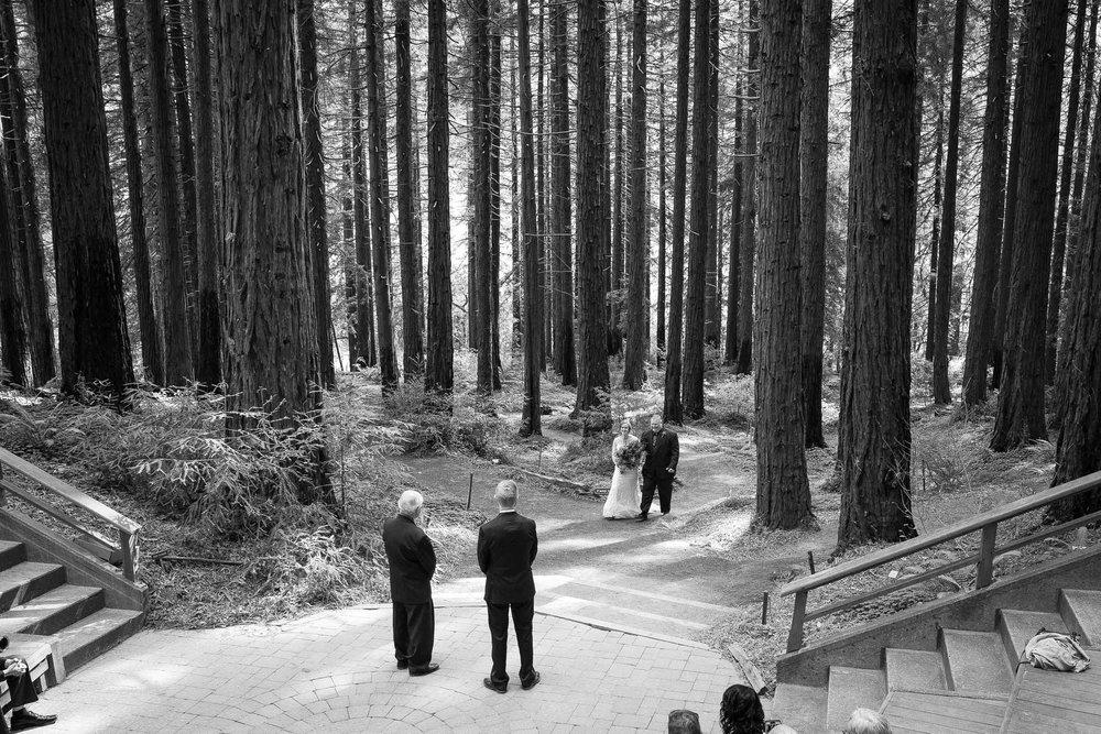 Berkeley Botanical Garden Wedding Ceremony in the Redwood Grove Ceremony and SF Bay Wedding Cruise Reception-29.jpg