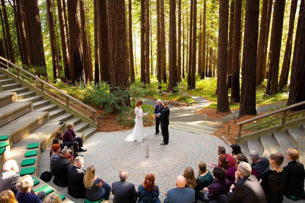 Berkeley Botanical Garden Wedding Ceremony in the Redwood Grove Ceremony and SF Bay Wedding Cruise Reception-38.jpg