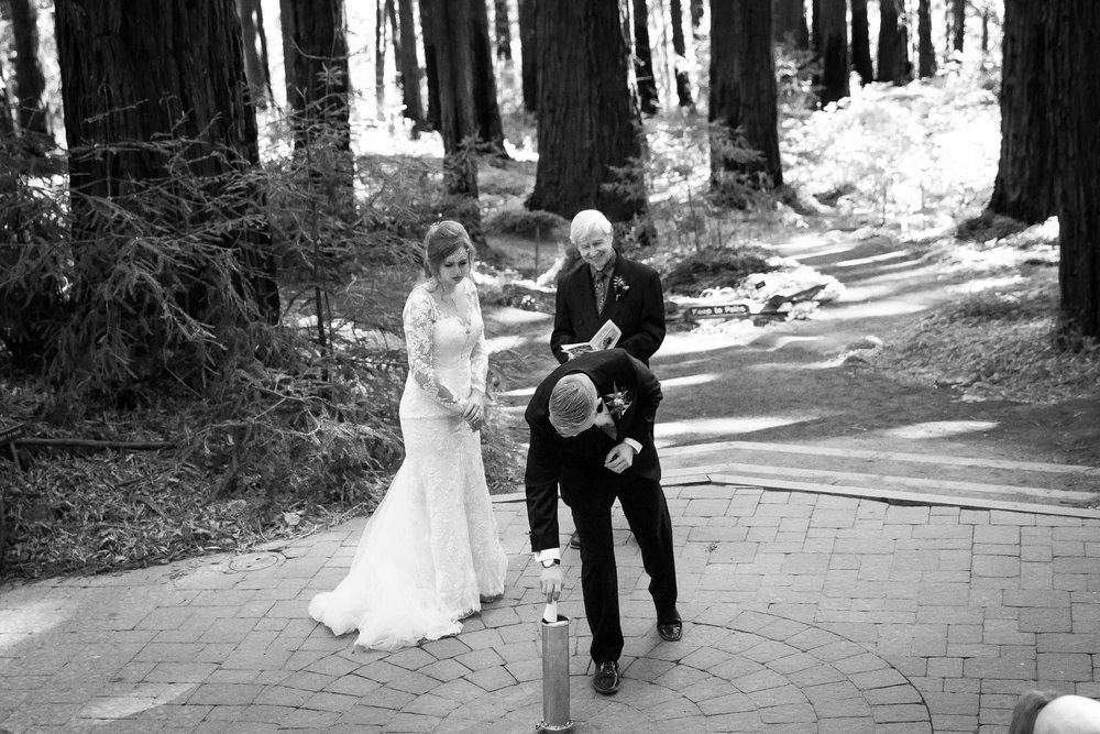 Berkeley Botanical Garden Wedding Ceremony in the Redwood Grove Ceremony and SF Bay Wedding Cruise Reception-41.jpg