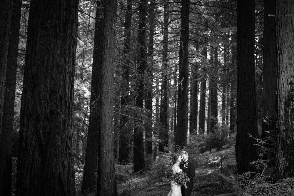 Berkeley Botanical Garden Wedding Ceremony in the Redwood Grove Ceremony and SF Bay Wedding Cruise Reception-50.jpg