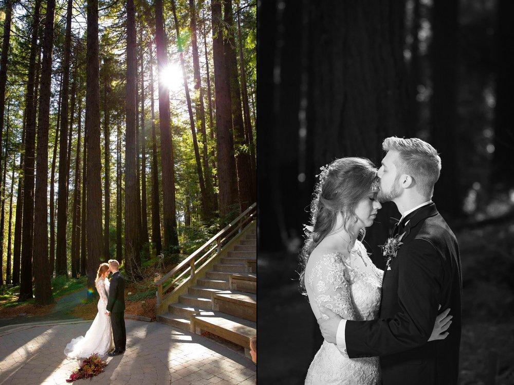Berkeley Botanical Garden Wedding Ceremony in the Redwood Grove Ceremony and SF Bay Wedding Cruise Reception-48.jpg