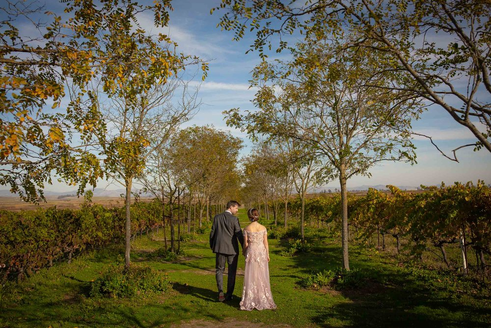 Jacuzzi Family Vineyards Wedding Photos-10.jpg