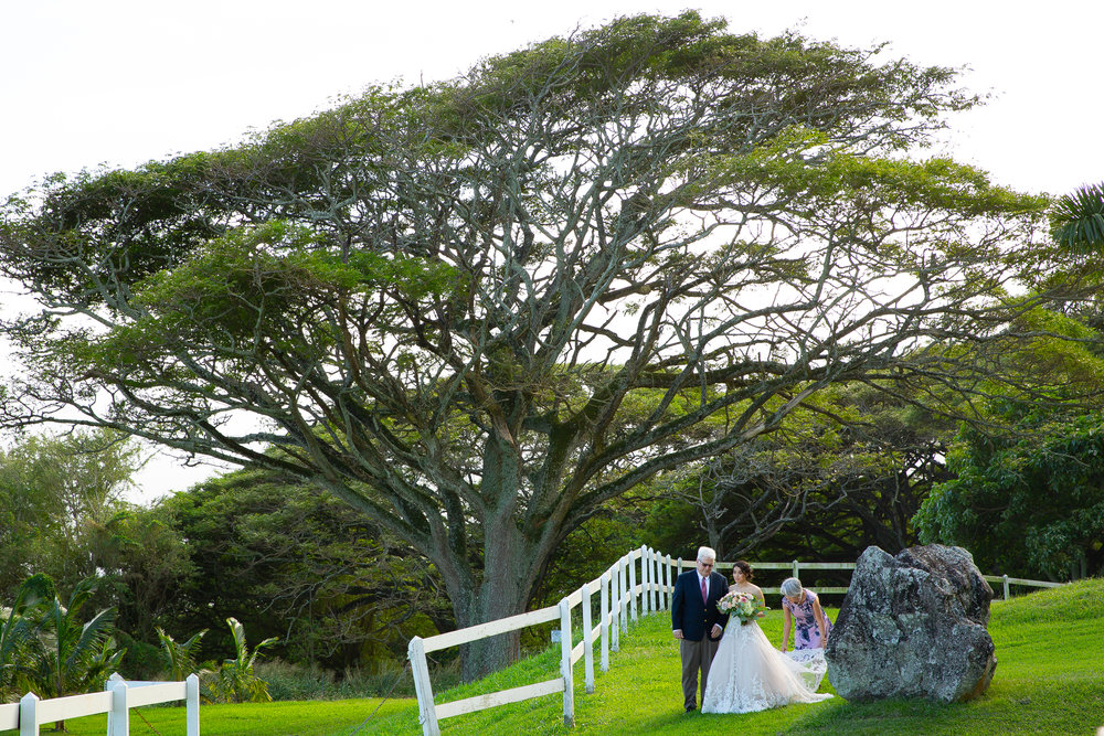 Kualoa Ranch Wedding in Hawaii -32.jpg