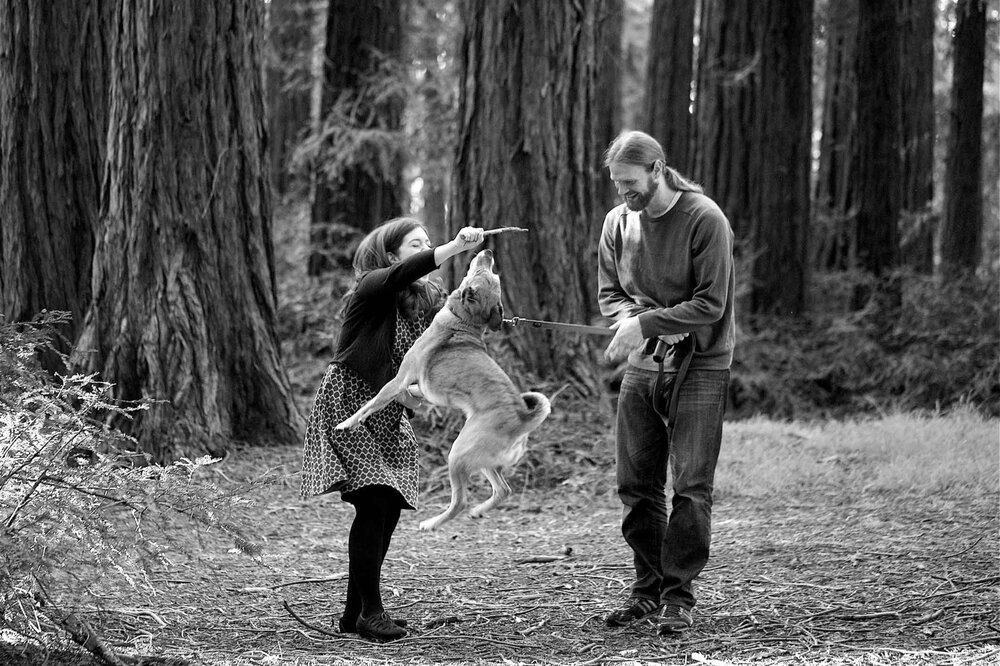 Bay Area Engagement photo with dog