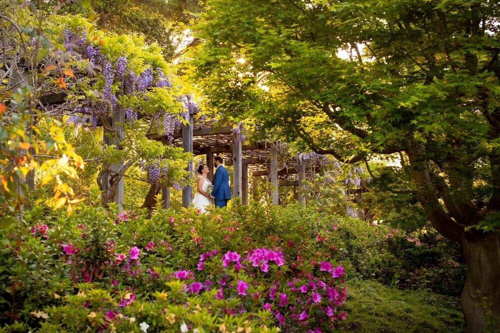 Fun San Francisco Bay Area wedding and portrait photogarpher-90.jpg