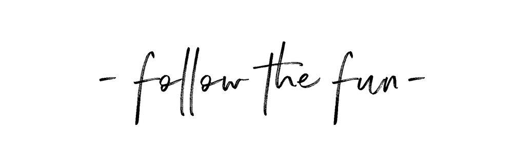 Follow the fun.jpg